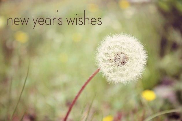 NY_wishes